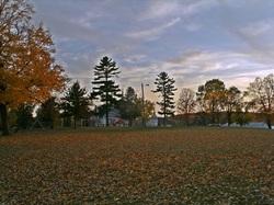 School Park